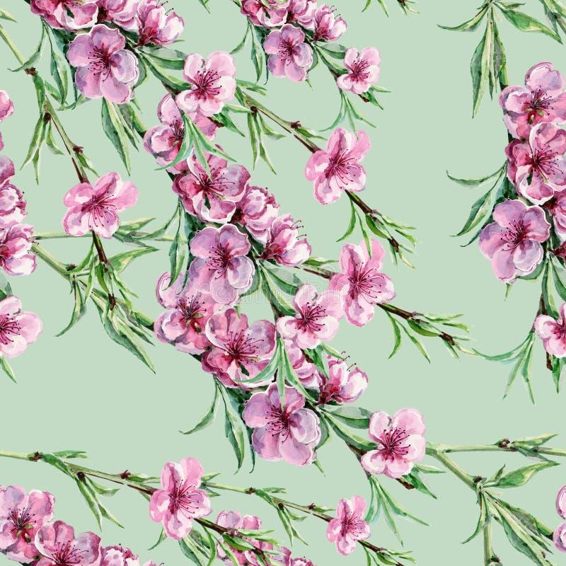 Akwareli gałęziasta brzoskwinia na wapno zieleni tle bezszwowy wzoru royalty ilustracja