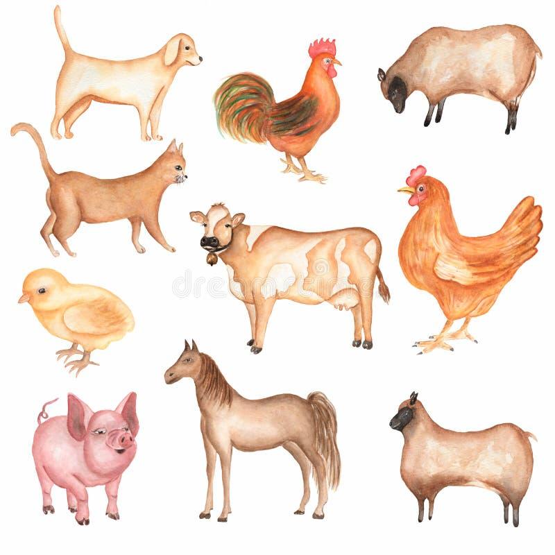 Akwareli gospodarstw rolnych zwierzęcia ręka rysujący set ?liczna domowa zwierz? domowe akwareli ilustracja Ko? karmazynka ?winia ilustracja wektor
