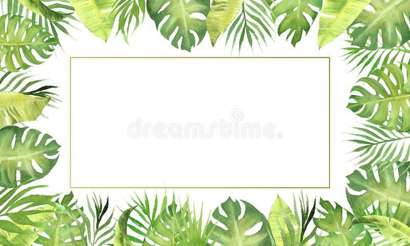Akwareli granicy ramy zieleni tropikalni liście monstera, drzewko palmowe opuszcza, bananowa roślina opuszcza ilustracji