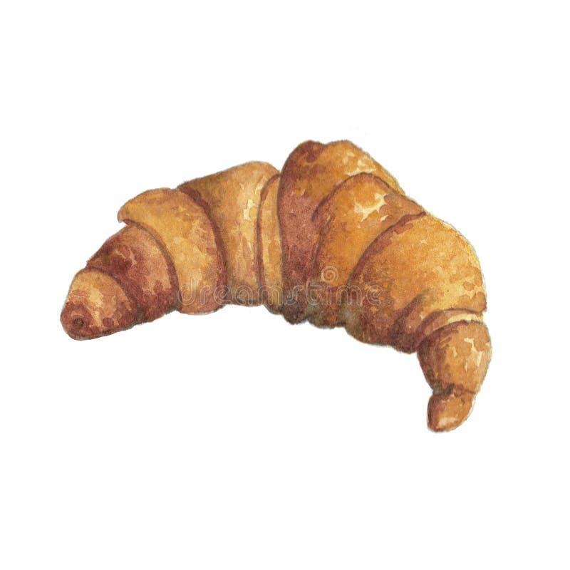Akwareli ilustracja gorący Francuski croissant ilustracji