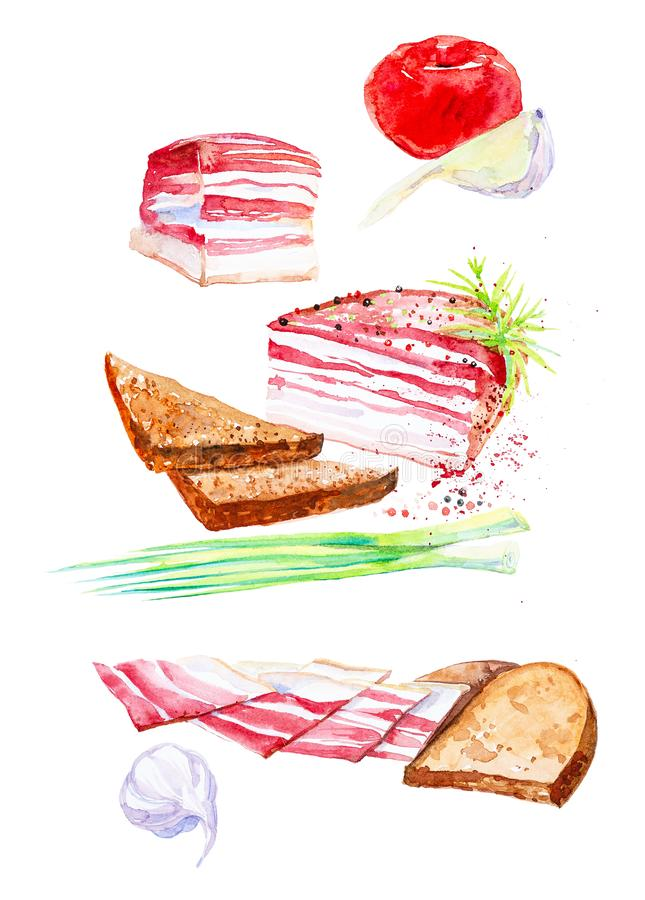 Akwareli ilustracja gotujący mięso set Zielone cebule, czosnek, baleron, baleron, chleb, wieprzowina i pikantność, pojedynczy bia ilustracji