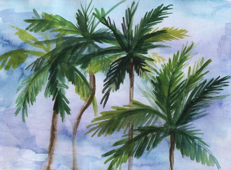 Akwareli ilustracja palmy ilustracji