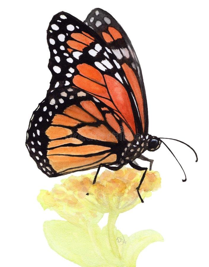 Akwareli ilustracja pomarańczowy motyl na białym tle ilustracja wektor
