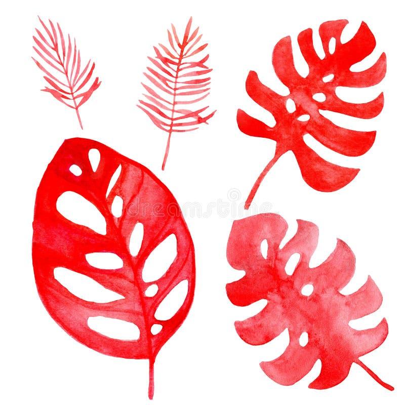Akwareli ilustracja tropikalni liście koralowy kolor royalty ilustracja