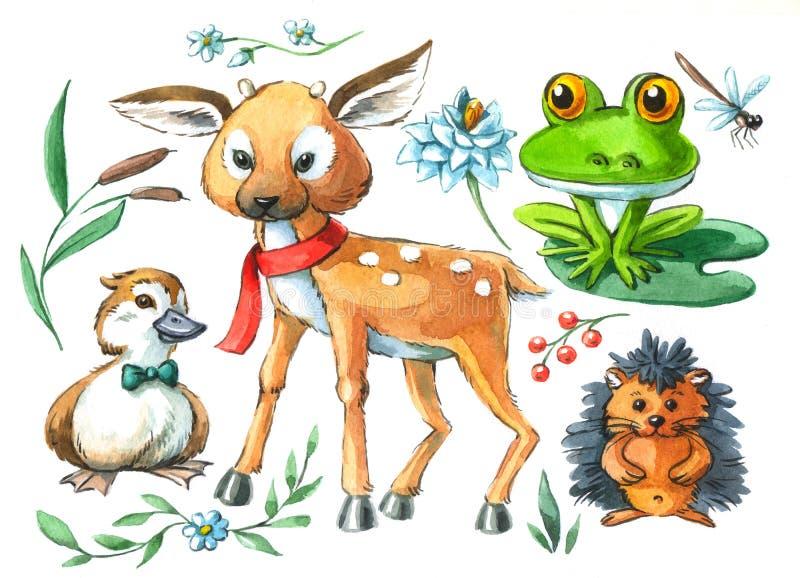 Akwareli ilustracyjni śliczni zwierzęta łaszą się kaczątko żaby jeża ilustracji