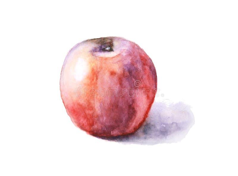 Akwareli jabłczany przegniły odosobniony na białym tle ilustracji