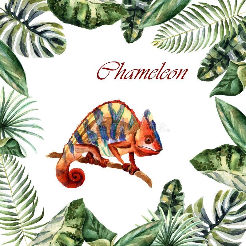 Akwareli jaskrawy hameleon odizolowywający na białym tle ilustracja wektor