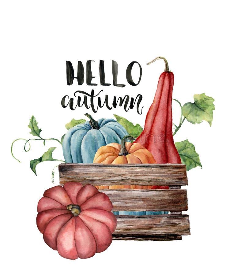 Akwareli jesieni karta z baniami Cześć Ręka malował jaskrawe banie z liśćmi i gałąź odizolowywającymi na bielu ilustracja wektor