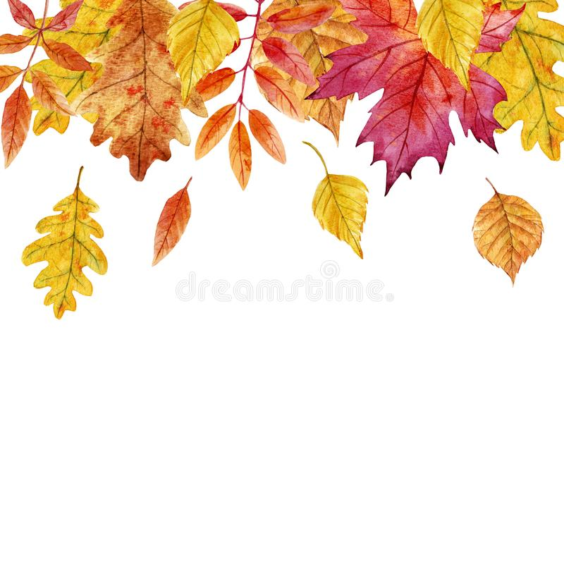 Akwareli jesieni liści rama royalty ilustracja