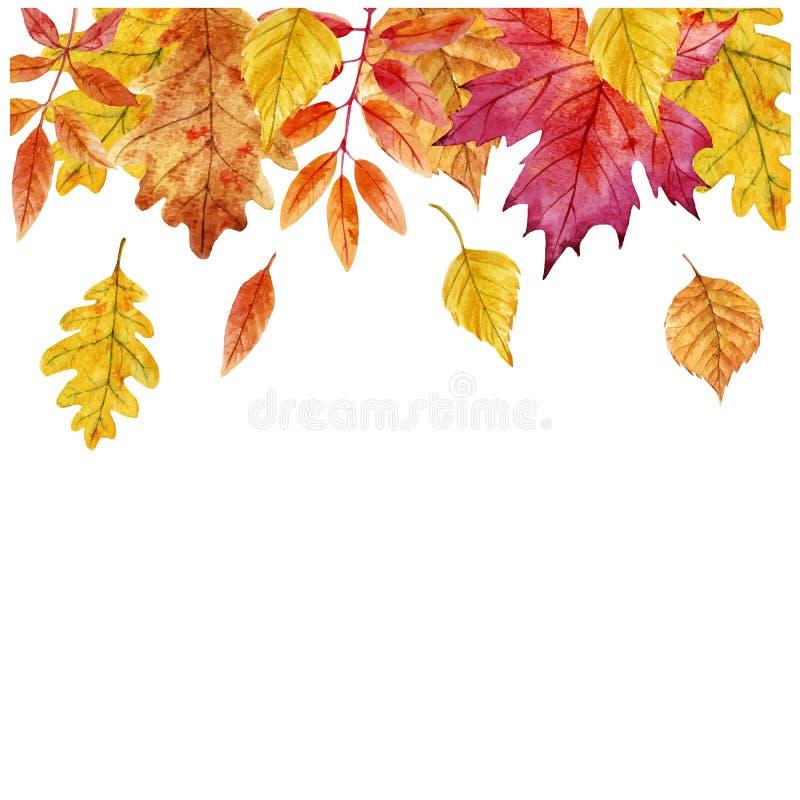 Akwareli jesieni liści wektoru rama royalty ilustracja