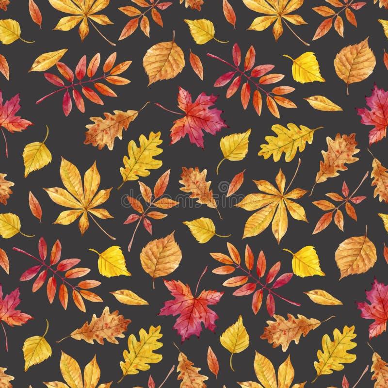 Akwareli jesieni liści wektoru wzór royalty ilustracja