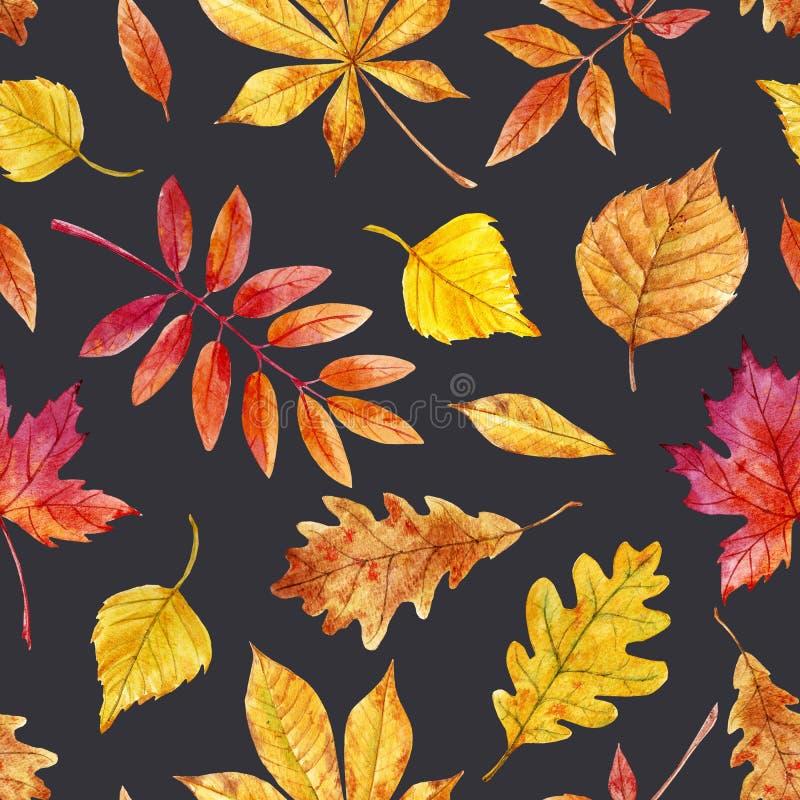 Akwareli jesieni liści wzór royalty ilustracja