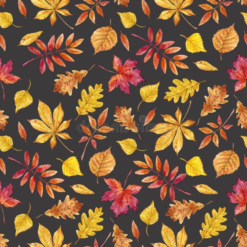 Akwareli jesieni liści wzór ilustracja wektor