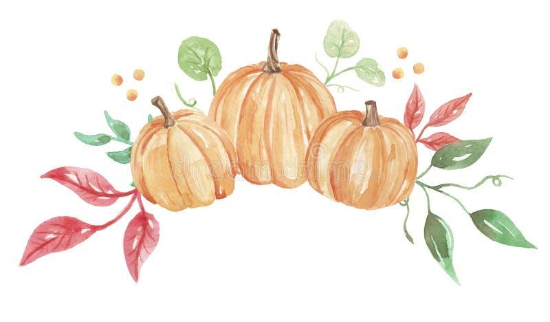Akwareli jesieni spadku kwiatu girlandy Dyniowa ręka Malujący Kwiecisty wianek ilustracji