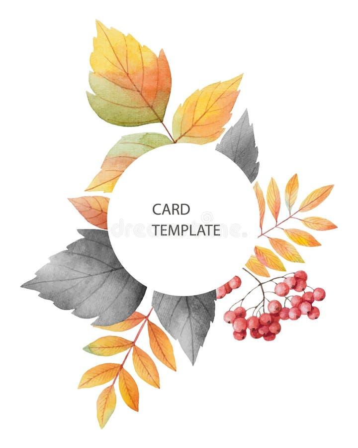 Akwareli jesieni wektoru karty szablonu projekt liście i gałąź odizolowywający na białym tle ilustracji