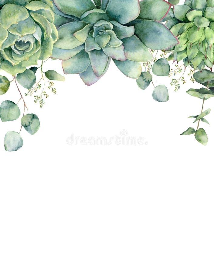 Akwareli karta z sukulentami i eukaliptusów liśćmi Wręcza malującą eukaliptus gałąź, zieleni sukulenty odizolowywający dalej royalty ilustracja