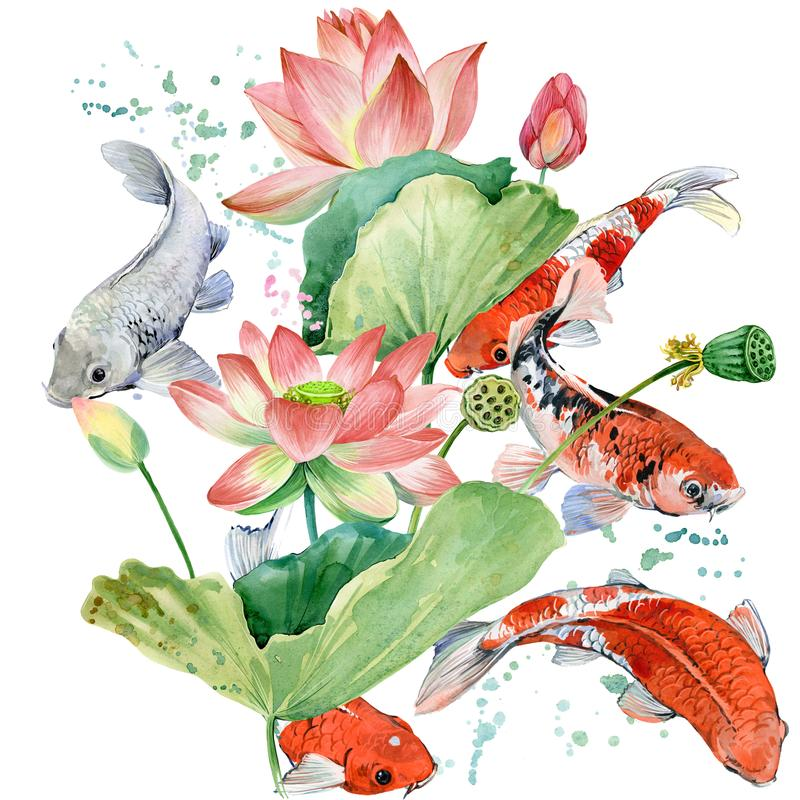 Akwareli koi karp i lotosowy kwiat akwareli tła rybia ilustracja ilustracji