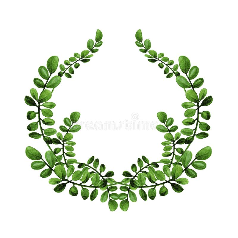 Akwareli kwiecista ilustracja gałąź z zielenią opuszcza wianek zdjęcie stock