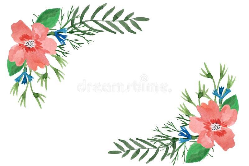 Akwareli kwiecista rama liście, ziele, poślubnik i cornflowers, ilustracji