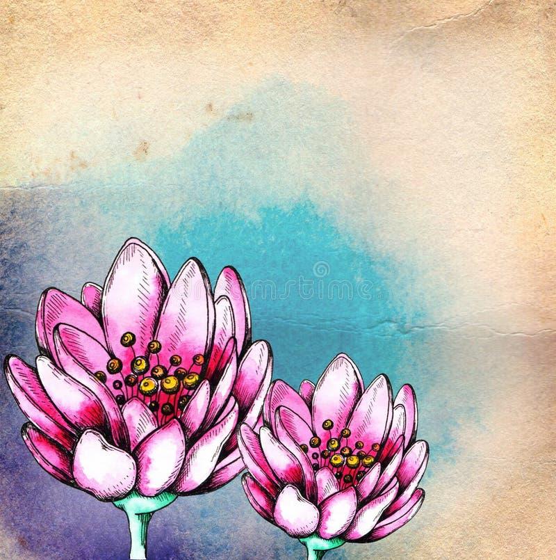 Akwareli kwiecisty tło z różowym lotosem royalty ilustracja