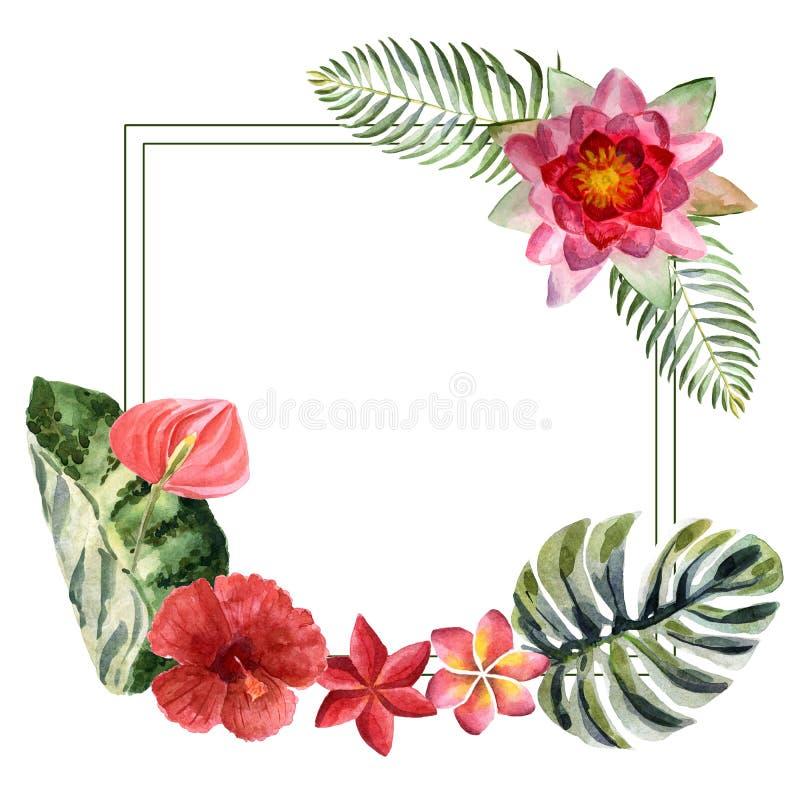 Akwareli lata jaskrawa ilustracja z tropikalnymi kwiatami royalty ilustracja