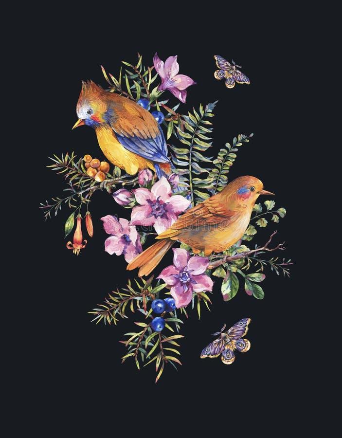 Akwareli lata rocznika kwiecista lasowa kartka z pozdrowieniami z para ptakami, jagody, ?ma, papro?, menchia kwitnie ilustracji