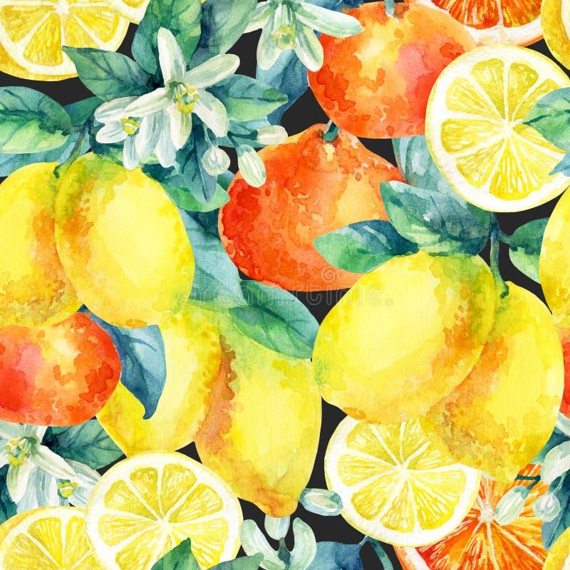 Akwareli mandarine pomarańcze i cytryny owoc rozgałęziamy się z liścia bezszwowym wzorem royalty ilustracja