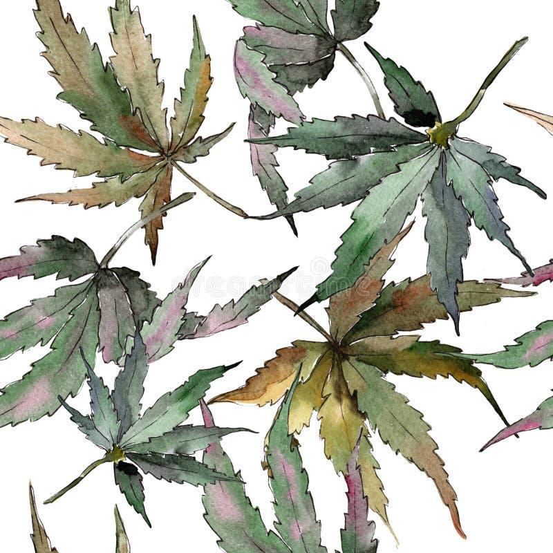 Akwareli marihuany zieleni liście Liść rośliny ogródu botanicznego kwiecisty ulistnienie Bezszwowy tło wzór royalty ilustracja