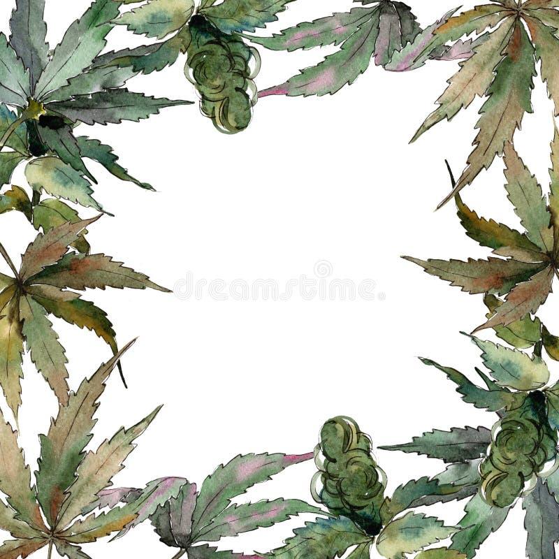 Akwareli marihuany zieleni liście Liść rośliny ogródu botanicznego kwiecisty ulistnienie Ramowy rabatowy ornamentu kwadrat ilustracji