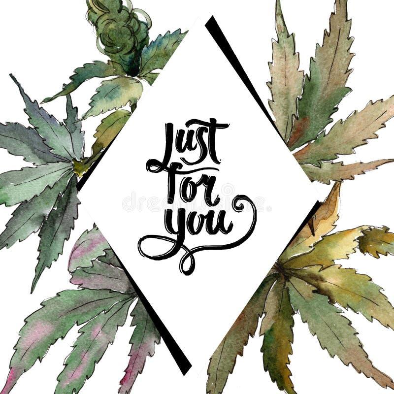 Akwareli marihuany zieleni liście Liść rośliny ogródu botanicznego kwiecisty ulistnienie Ramowy rabatowy ornamentu kwadrat royalty ilustracja
