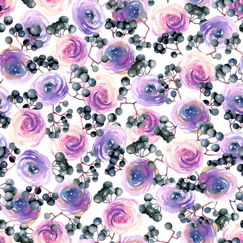 Akwareli menchie, purpurowe róże i elderberry gałąź bezszwowy wzór, ilustracja wektor