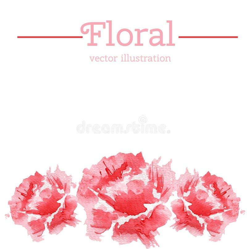 Akwareli menchii róży kwiatu ręka rysująca wektorowa ilustracja odizolowywająca na białym tle, dekoracyjna granica, kwiecista ram royalty ilustracja
