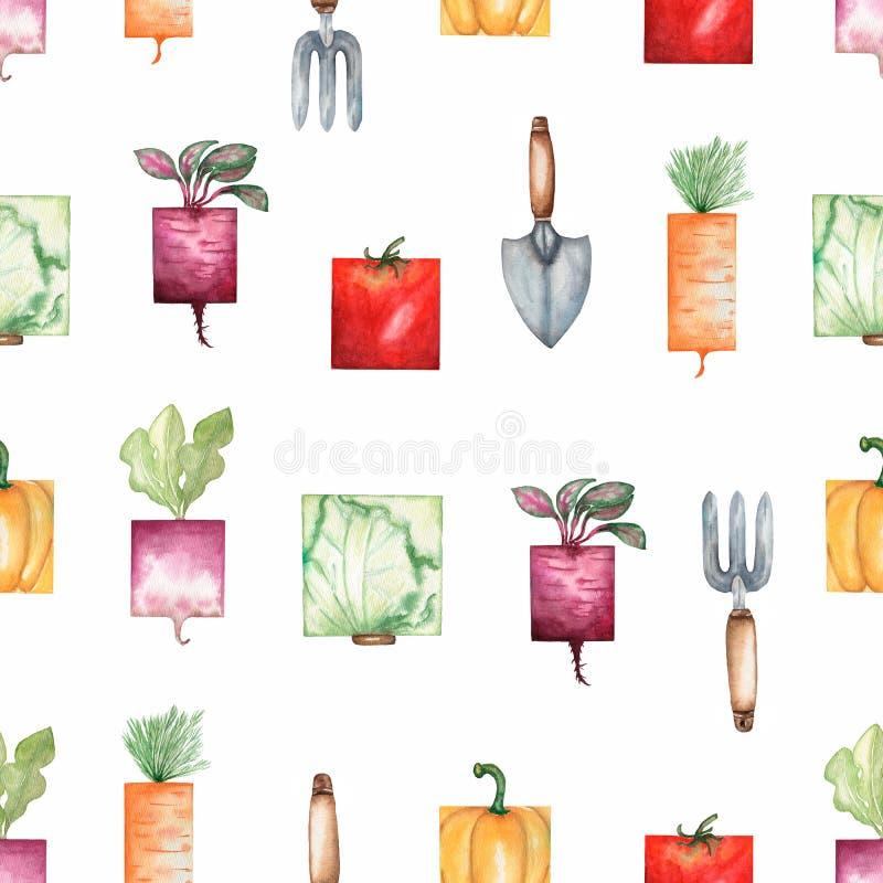 Akwareli ogrodowych narzędzi i organicznie warzyw bezszwowy wzór Ręka rysujący tło z ogrodową łopatą, świntuch, kapusta, ilustracja wektor