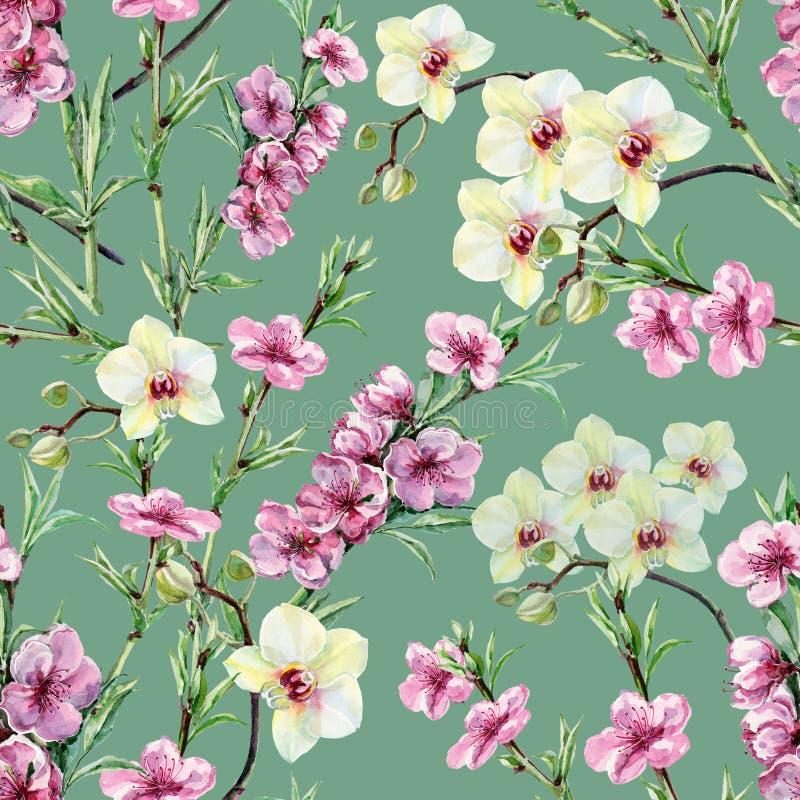 Akwareli orchidea na zielonym tle i bezszwowy wzoru ilustracja wektor