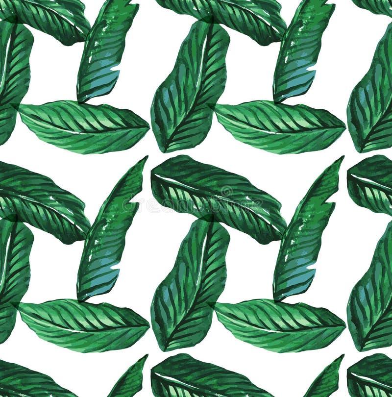 Akwareli palmy tropikalni bezszwowi deseniowi liście royalty ilustracja