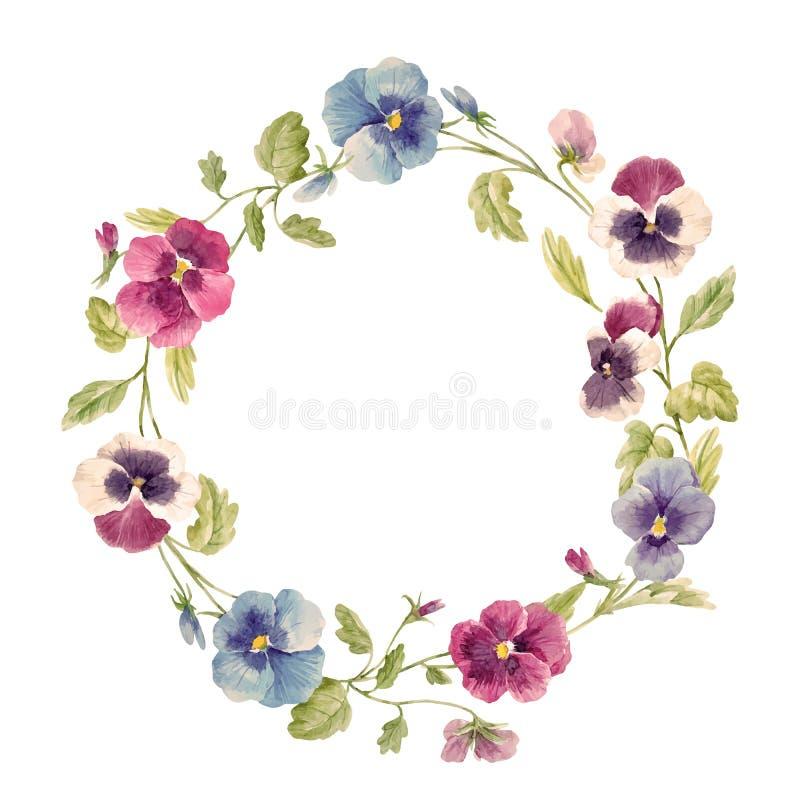 Akwareli pansy kwiatu wektoru wianek royalty ilustracja