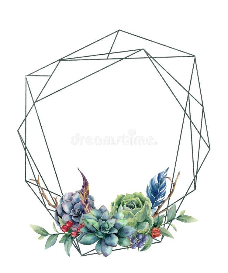 Akwareli poligonalna rama z eukaliptusem i sukulentami Ręka rysująca nowożytna kwiecista etykietka z eukaliptusów liśćmi i royalty ilustracja