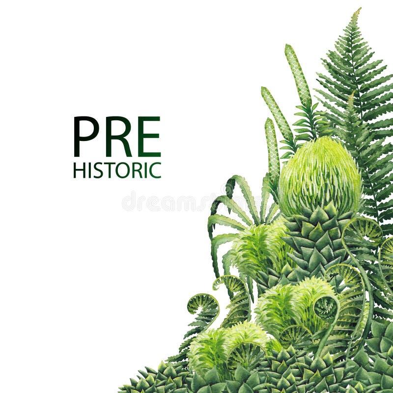 Akwareli prehistoryczne rośliny ilustracji
