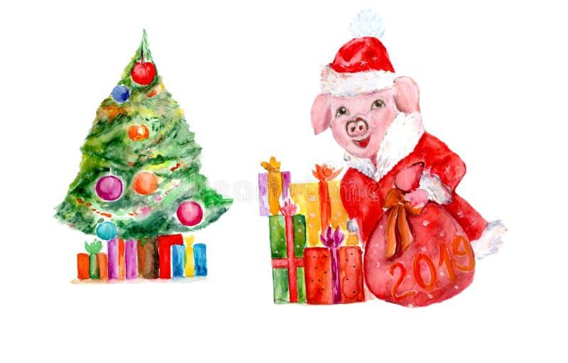 Akwareli prosiątka symbol nowy rok w wizerunku Święty Mikołaj royalty ilustracja