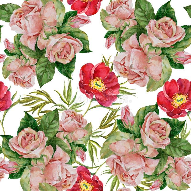 Akwareli róże z czerwoną peonią na białym tle Bezszwowy wzór dla gesign ilustracji