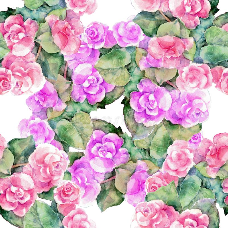 Akwareli różna begonia na białym tle bezszwowy wzoru ilustracja wektor