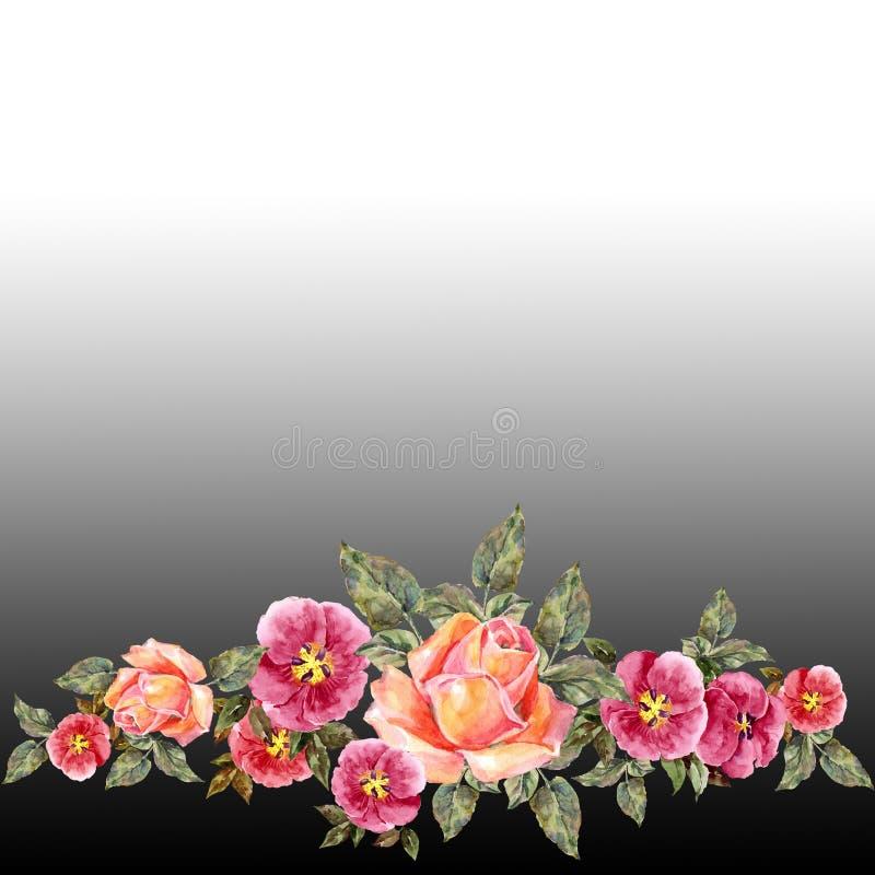 akwareli różowe róże Kwiecista granica na czarnym tle ilustracji