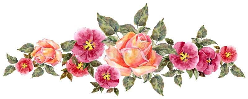 akwareli różowe róże Kwiecista ilustraci granica royalty ilustracja