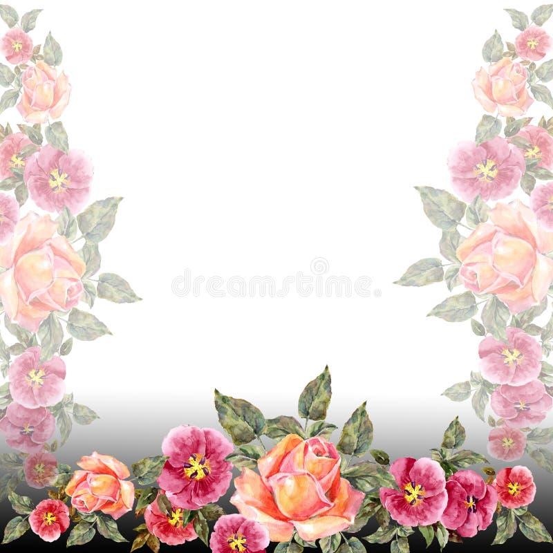 akwareli różowe róże Kwiecista ilustraci rama ilustracji