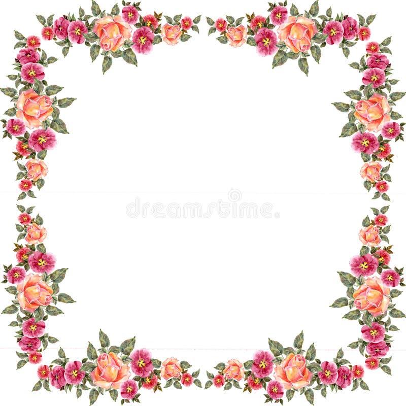 akwareli różowe róże 8 projekta eps kartotek kwiecista ramowa wysokość zawrzeć jpeg postanowienie ilustracja wektor