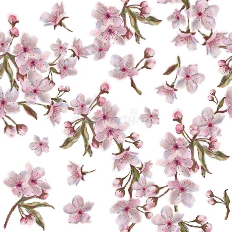 Akwareli ręka malująca wiśnia kwitnie wianku wzór Botaniczna ilustracja w rocznika stylu ilustracja wektor