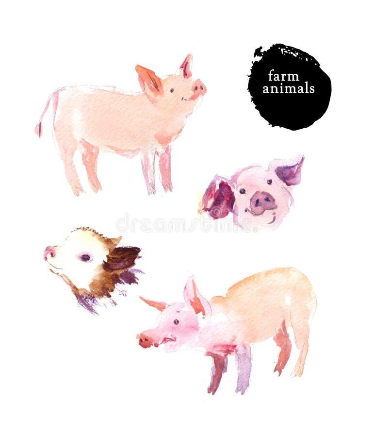 Akwareli ręka rysująca ilustracja śliczne świnie ilustracja wektor