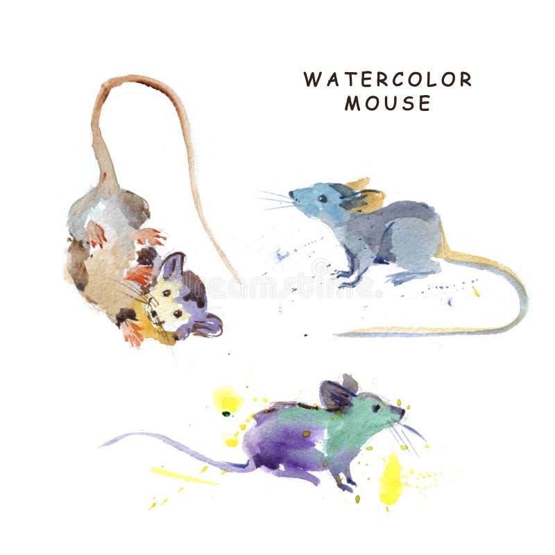 Akwareli ręka rysująca ilustracja śliczne myszy ilustracja wektor