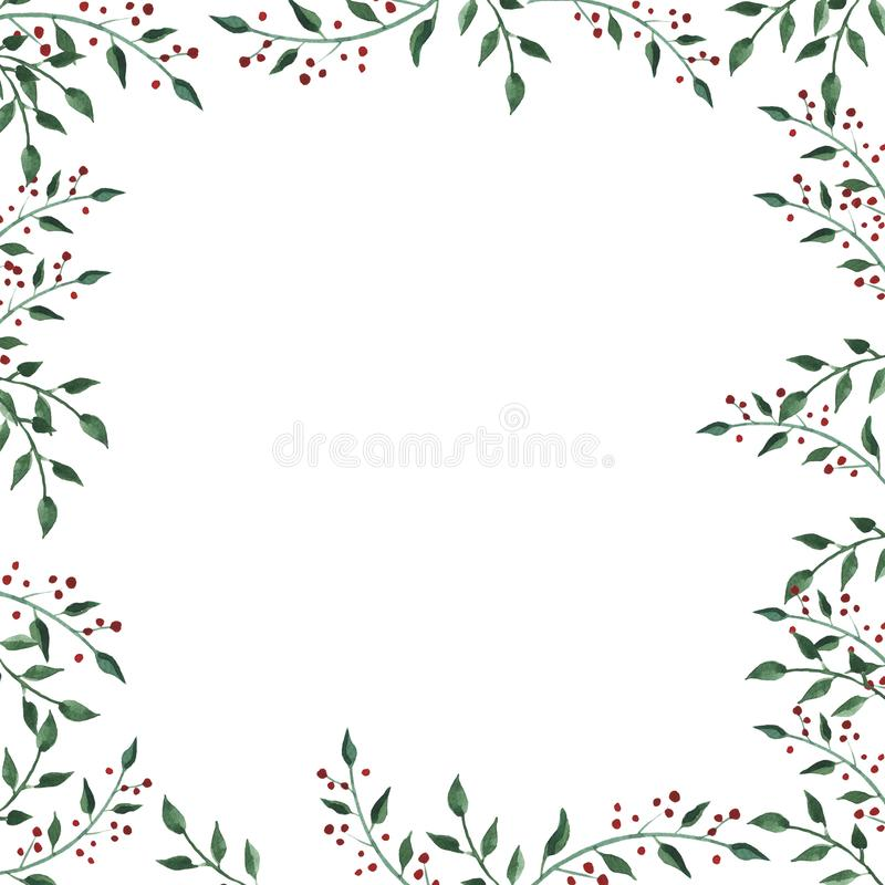 Akwareli rama z wildflower, ziele, liść kolekcja ogród, dziki ulistnienie, kwiaty, rozgałęzia się ilustracja wektor