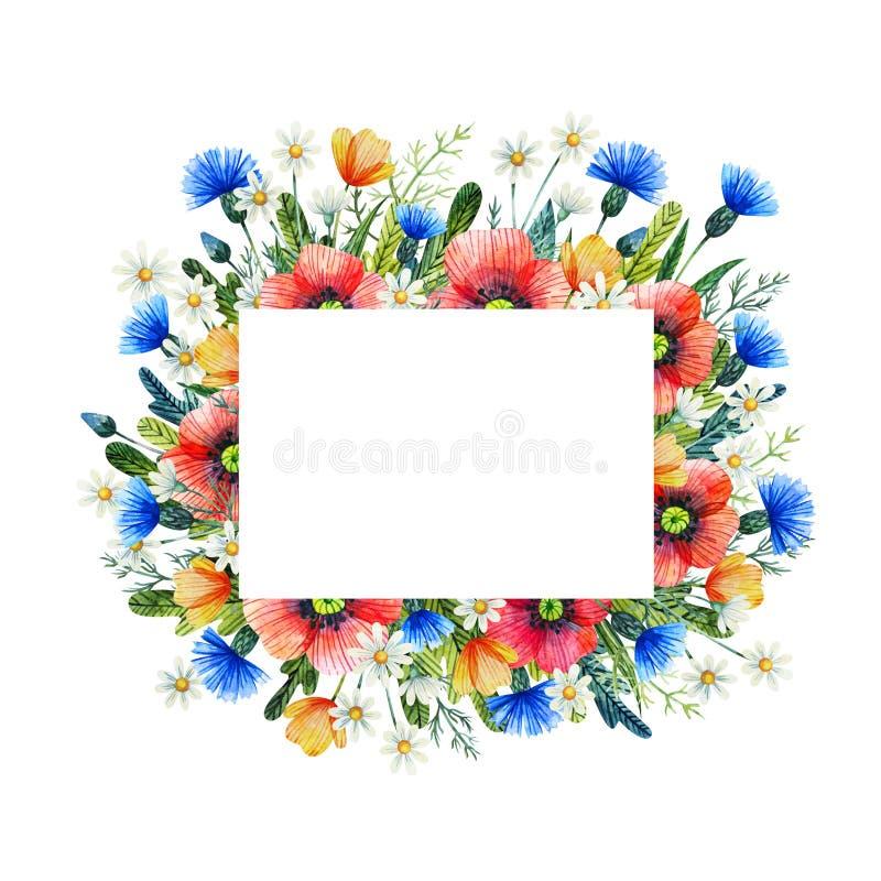 Akwareli rama z wildflowers Maczki, chabrowi, chamomile szczotkarski węgiel drzewny rysunek rysujący ręki ilustracyjny ilustrator zdjęcie stock